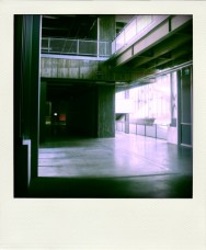 Poladroid5
