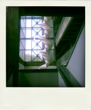 Poladroid7